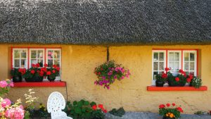adare cottage shop cottage photo 24 L
